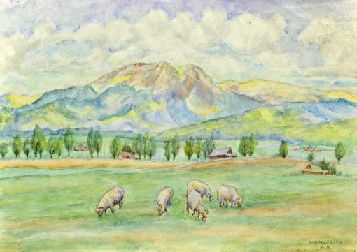 Pejzaż górski z owcami przedstawiający Zakopane wykonany został akwarelą na papierze. Malował Bolesław Mach