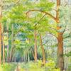 Pejzaż leśny z drogą został wykonany akwarelą na papierze. Malował Bolesław Mach w 1962. Sygnowany w prawym dolnym rogu.
