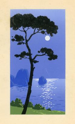 Letni pejzaż przedstawiający brzeg morski w świetle księżyca