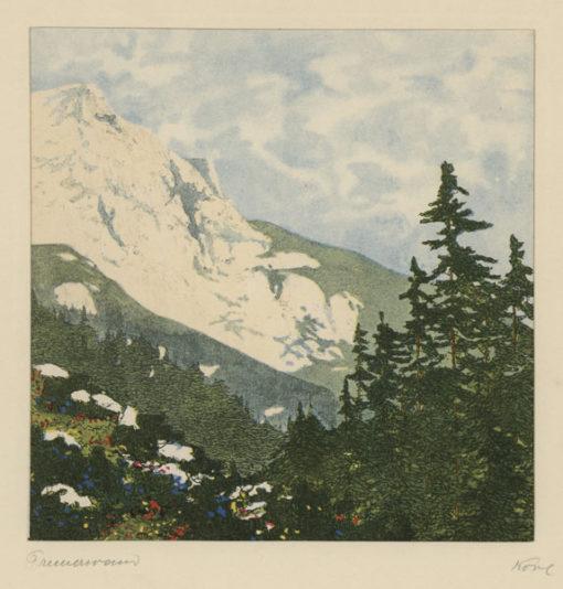 """Oryginalna barwna litografia z przełomu XIX i XX w. pt. """"Preinerwand"""" z serii widoków Alp austriackich. Rytował: Fritz Koziol."""