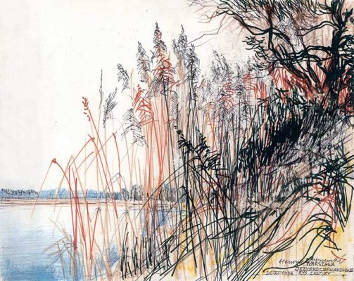 Grafika przedstawiająca jeziorko Czerniakowskie w Warszawie w dzielnicy Sadyba