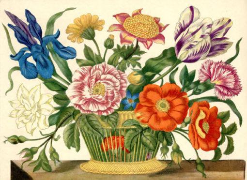 Grafika wykonana w technice druku barwnego na podstawie miedziorytu Marii Sibylli Merian z przełomu XVII i XVIII wieku