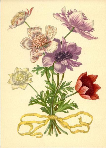 Grafika z bukietem polnych kwiatów wykonana w technice druku barwnego na podstawie miedziorytu Marii Sybilli Merian z przełomu XVII i XVIII wieku