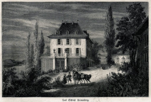 Oryginalny drzeworyt sztorcowy z widokiem zamku Arenenberg w Szwajcarii. Grafika z lat 1870-tych
