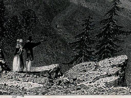 wykonany w technice stalorytu w 1839 roku przez artystów: WH Barlett