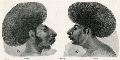 Francuska grafika z przedstawicielami ludu Azteków. Rycina z 2 głowami ujętymi z profilu została wykonana w technice drzeworytu sztorcowego w latach 1880-tych.