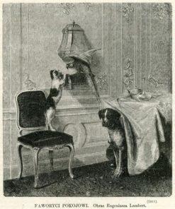 Grafika przedstawia kota