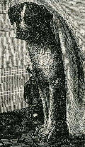 psa i papugę wg. obrazu Eugeniusza Lamberta Faworyci pokojowi z 1869. Rycina z początku lat 1870-tych wykonana w technice drzeworytu sztorcowego.