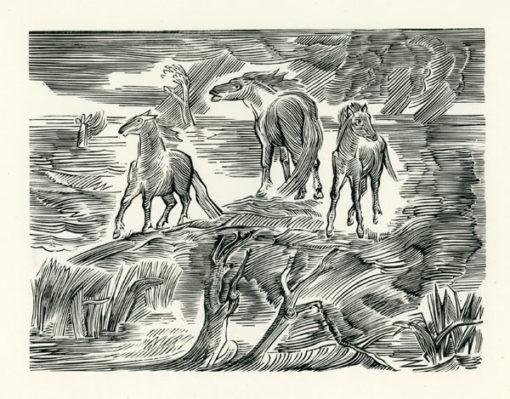 Rycina wykonana techniką drzeworytu przez Bognę Krasnodębską-Gardowską (1900-1986). Grafika przedstawia konie uciekające przed powodzią.