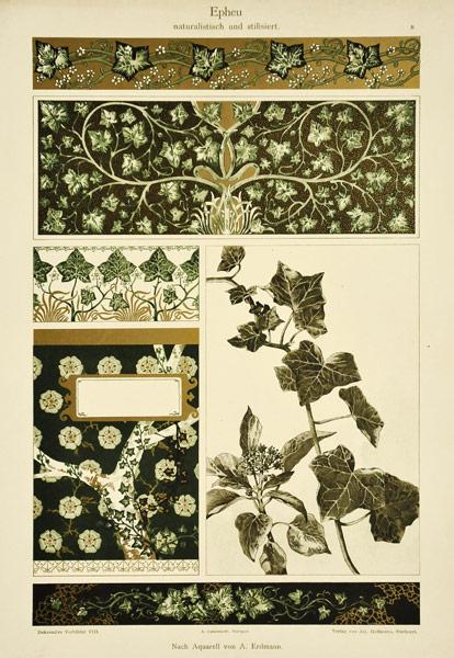 "Niemiecka secesyjna litografia z 1897 r. zatytułowana ""Epheu naturalistisch und stilissiert"". Wg akwareli A. Erdmanna"