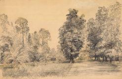 Grafika przedstawiająca fragment parku Łazienkach w Warszawie