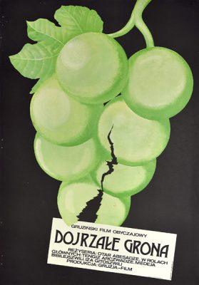 """Plakat filmowy do gruzińskiego filmu """"Dojrzałe grona"""". Reżyseria: Otar Abesadze. Projekt: ZYGMUNT ZARADKIEWICZ"""