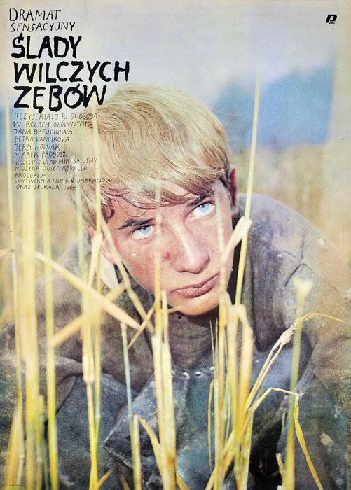 """Oryginalny polski plakat filmowy do czeskiego filmu """"Ślady wilczych zębów"""". Reżyseria: Jiri Svoboda. Projekt plakatu: niesygnowany"""