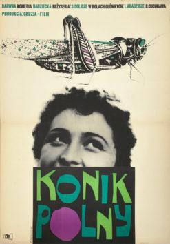 """plakat filmowy """"Konik polny"""" Roman Cieślewicz"""