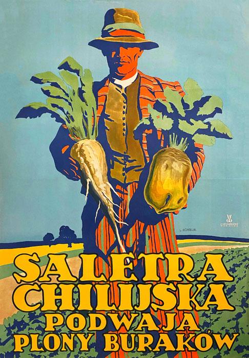 "polska szkoła plakatu, plakat reklamowy ""Saletra chilijska"", Stefan Norblin"