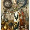 "Oryginalna stara grafika, rycina ""Culture of Africa"", Meyers, ok. 1880"