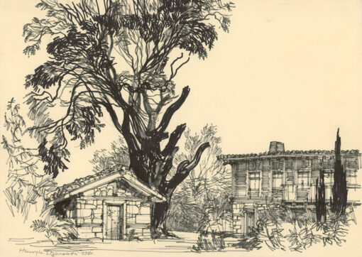 grafika: Bułgaria - drzewo figowe w Sozopolu, proj. Henryk Dąbrowski